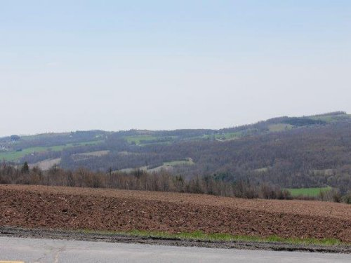 11 Acres Farmland Mountain Views : Lincoln : Madison County : New York