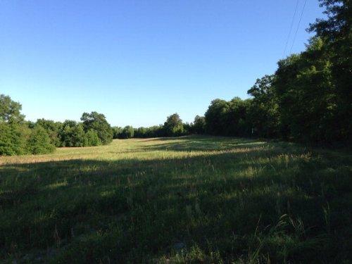 72 +/- Ac In Troy : Troy : Pike County : Alabama