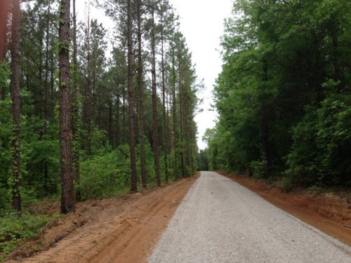 14 +/- Ac On Smart Rd In Troy : Troy : Pike County : Alabama