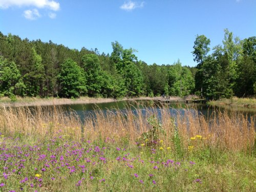 Buck Lake Farms : Milledgeville : Hancock County : Georgia