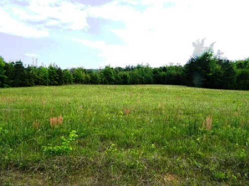 38.65 Acre Hunting Tract With Creek : Lexington : Oglethorpe County : Georgia