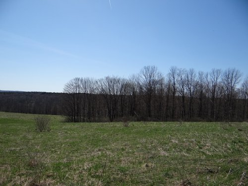5 Acres Private Hunting Acres : Smyrna : Chenango County : New York