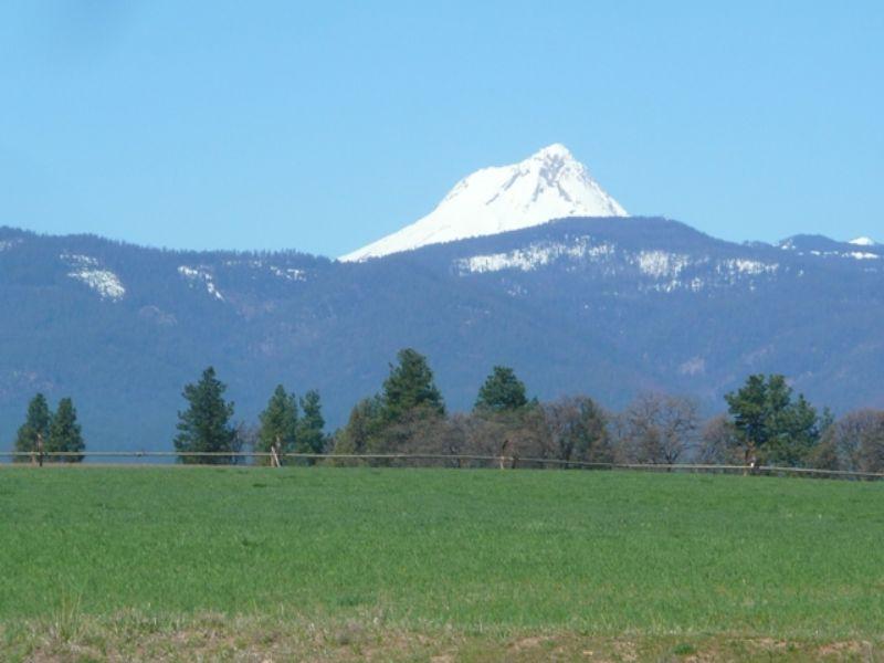 Pheasant Ridge Farm : Tygh Valley : Wasco County : Oregon