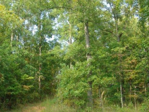 6.45 Acre Sugartree Falls. Terms : Waynesboro : Wayne County : Tennessee