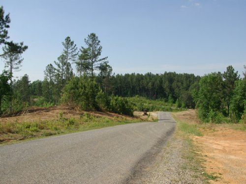 Near Birmingham - Tract 11 Of 28 : Odenville : St. Clair County : Alabama