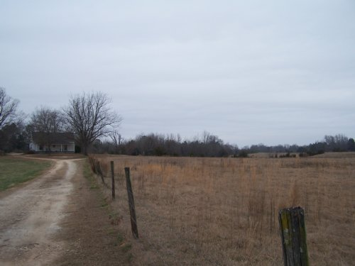 Nation Farm : Abbeville : South Carolina