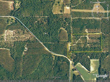 106.692 Acres : Butler : Taylor County : Georgia