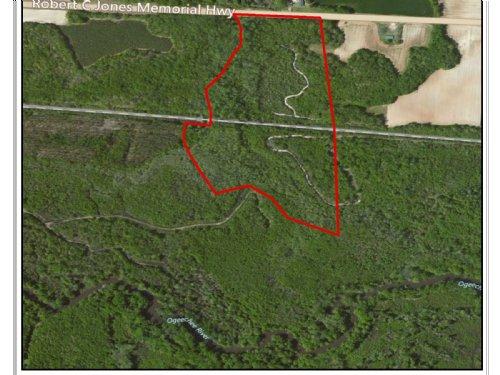 Chew Mill Creek : Millen : Jenkins County : Georgia