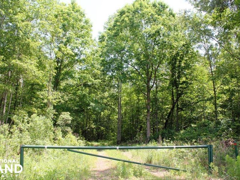 Bonneau Recreational Tract : Bonneau : Berkeley County : South Carolina