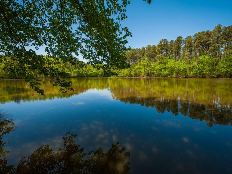 Wimbish Lake Farm : Asheboro : Randolph County : North Carolina