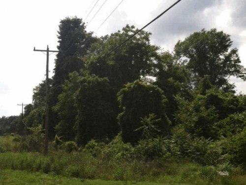 Old Easley Highway Parcel 3 : Greenville : South Carolina