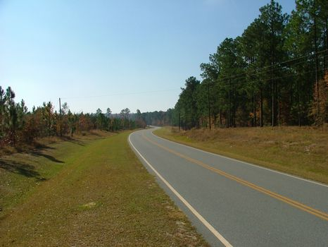 Prime Land on Pinetuckey : Swainsboro : Emanuel County : Georgia