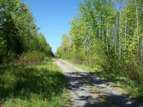 105 Acre Parcel In Monson : Monson : Piscataquis County : Maine