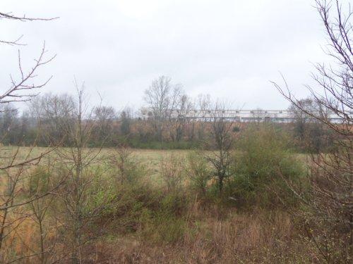 Bank Owned 50.83 Acres Two Lakes : Braselton : Jackson County : Georgia
