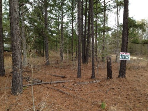 10.66 Acres Willie Davis Rd : Swainsboro : Emanuel County : Georgia