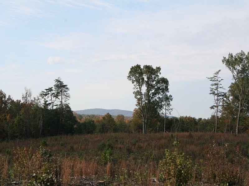 22.84 Acres On Anderson Hwy : Buckingham : Buckingham County : Virginia