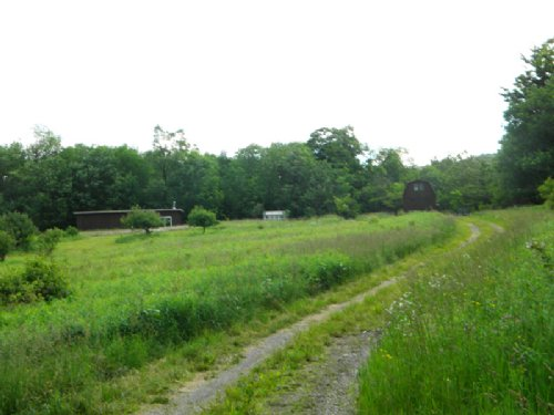 55 Acres Home Tillable Acreage : Freetown : Cortland County : New York