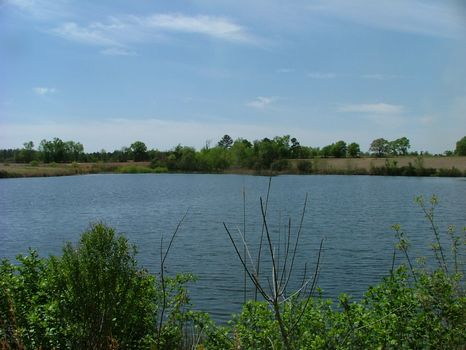 3.73 Acres | Bark Creek Plantation : Waynesboro : Burke County : Georgia