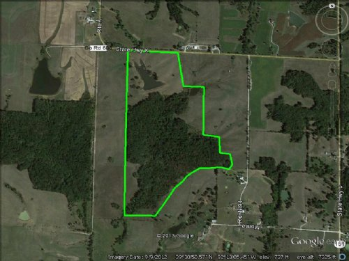 132 Acres Mostly Woods : Madison : Monroe County : Missouri