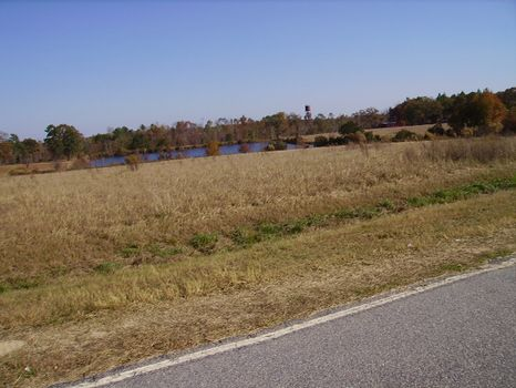 3.25 Acres | Bark Creek Plantation : Waynesboro : Burke County : Georgia