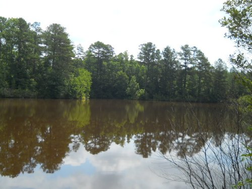 285.33 Acres At Bohannon Crossroads : Newnan : Coweta County : Georgia