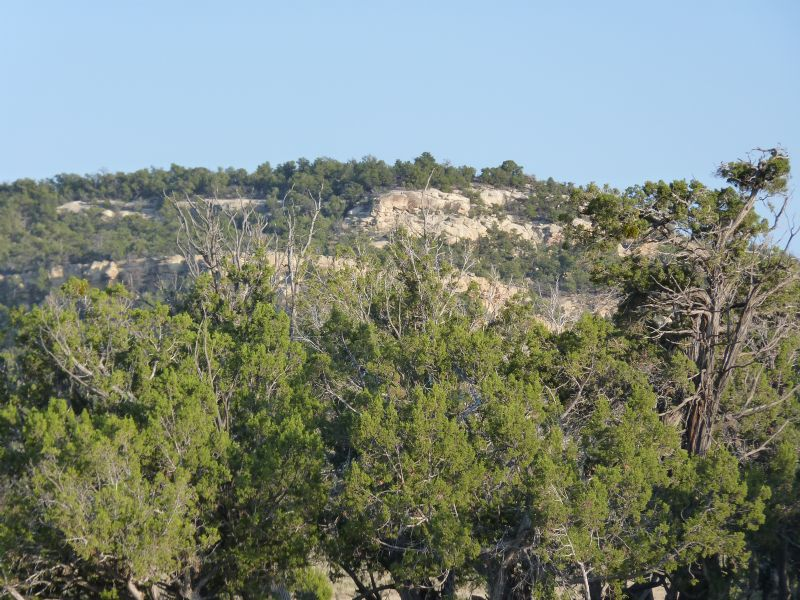 New Mexico Sportsman's Ranch : Fence Lake : Cibola County : New Mexico