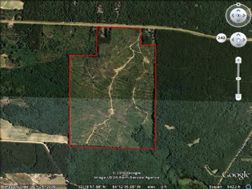 148 Acres In Big Buck Country : Ideal : Macon County : Georgia