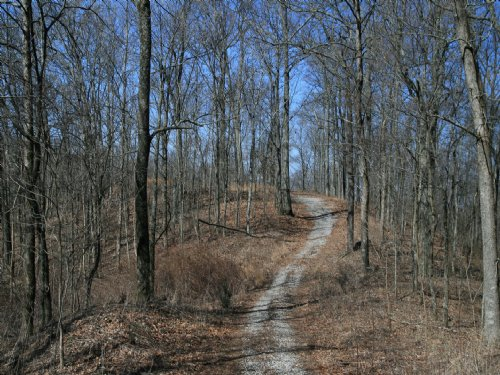 21 Acres With Awesome Hilltop Views : Ashland City : Davidson County : Tennessee