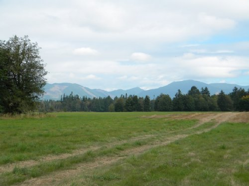 287 Acre Cattle Ranch : Elma : Mason County : Washington