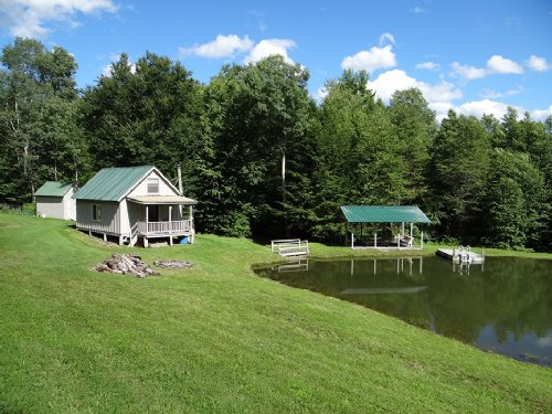 Cabin Stocked Pond Woods 12 Acres : Berkshire : Tioga County : New York
