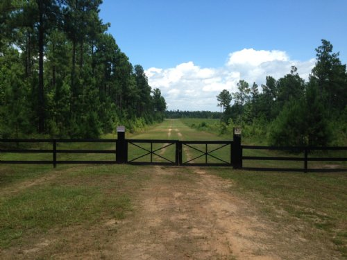 40+ Acres - Great Getaway : Swainsboro : Emanuel County : Georgia