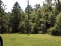 Owner Financing 9.6 Acres : Brooksville : Hernando County : Florida