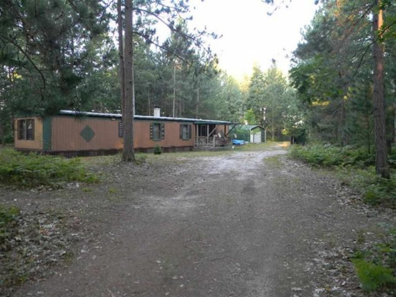 Amazing Hunting Camp : Black River : Alcona County : Michigan