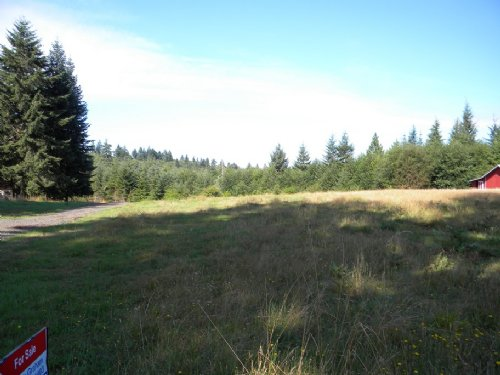 Build Now And Subidive Later : Elma : Grays Harbor County : Washington