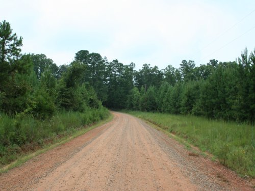 Ellis Rd. Sportsman Tract : Gray : Jones County : Georgia