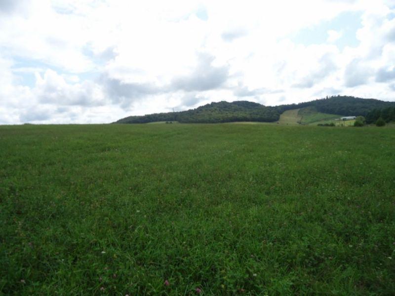 Home On 32 Acres : Bonnieville : Hart County : Kentucky