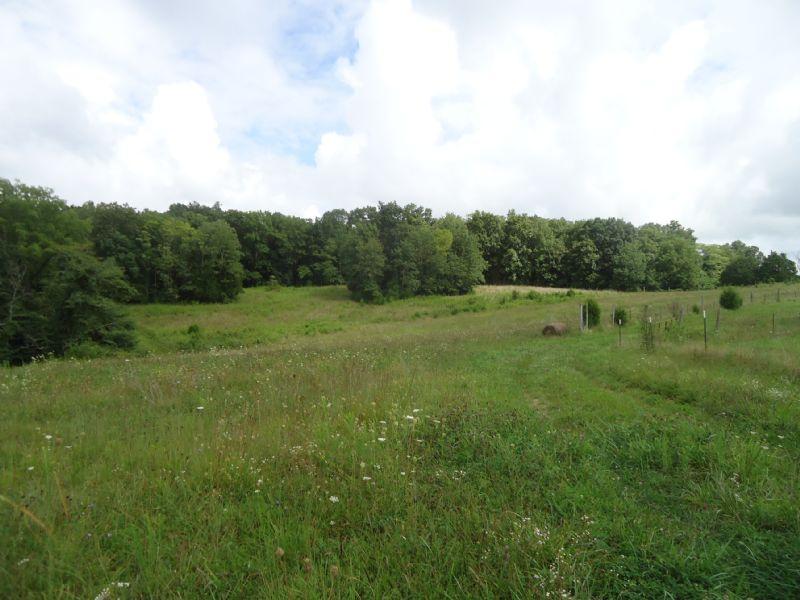 39 Acre Mini Farm : Bonnieville : Hart County : Kentucky