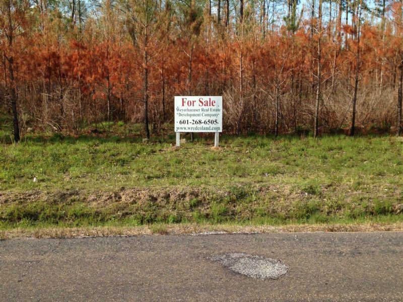 H. Thompson Road #7 : Hattiesburg : Lamar County : Mississippi