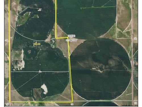 Holt County Pivot Irrigated Farm : O'Neill : Holt County : Nebraska