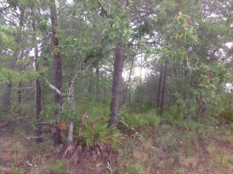 930 Walk In The Water : Lake Wales : Polk County : Florida