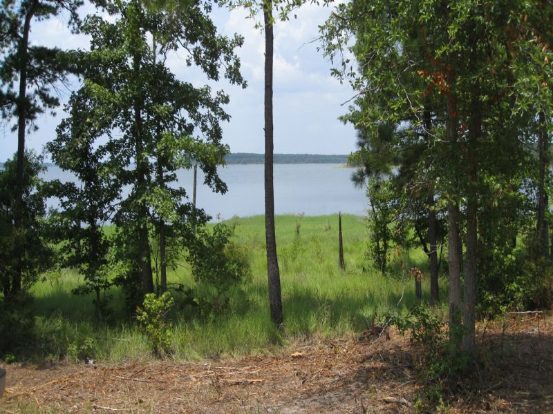 Needmore Point Lake Tract 1 : Broaddus : San Augustine County : Texas