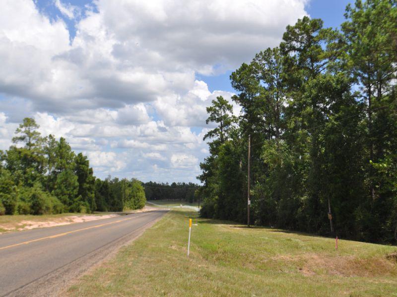47 Acres- Dual Frontage, Fm 942 : Livingston : Polk County : Texas