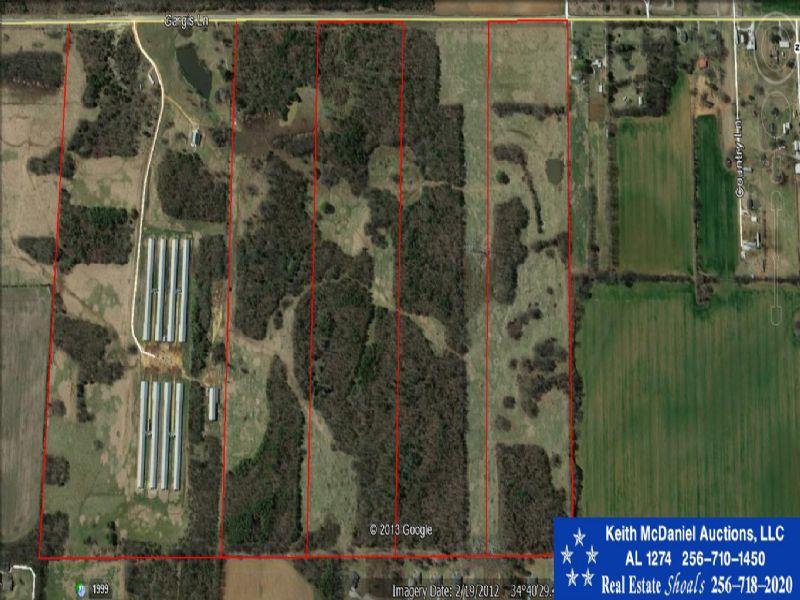 Auction: 240± Acres In Al : Tuscumbia : Colbert County : Alabama