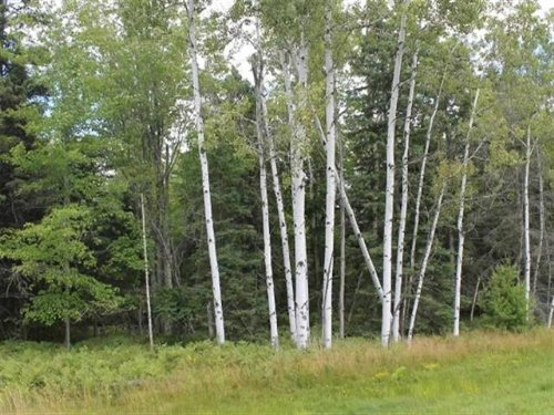 Tbd Tuttle  Mls#1075311 : L'anse : Baraga County : Michigan