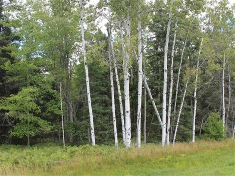 Tbd Tuttle  Mls#1075311 : L'anse : Baraga County : Michigan