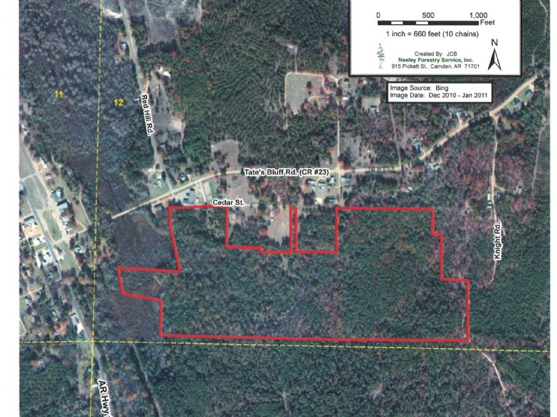 Chidester Timber & Hunting Tract : Chidester : Ouachita County : Arkansas