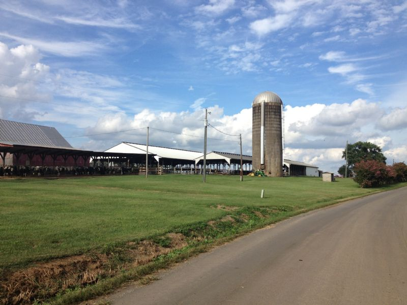 660 Acre Dairy Farm In Bedford, Va : Huddelston : Bedford County : Virginia