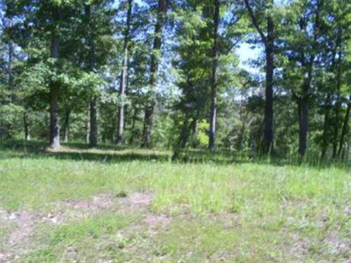Excellent Wooded Residential Bui : Saddlebrooke : Christian County : Missouri