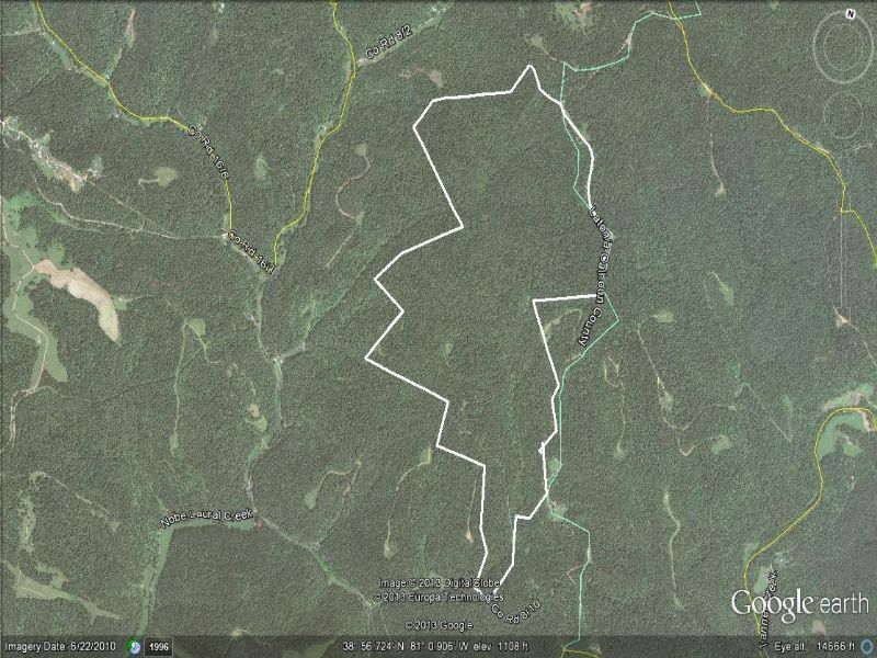 338 +/- Excellent Hunting Property : Grantsville : Calhoun County : West Virginia
