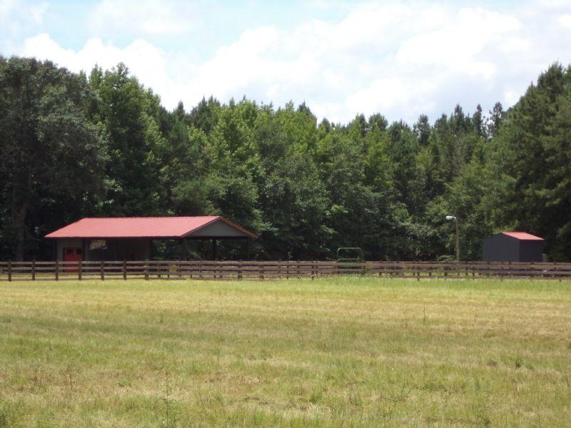 Foggy Cypress Farm 291 +/- Acres : Louisville : Burke County : Georgia
